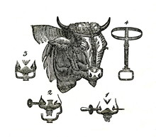 Nose Ring, What Is Used To Maintain Control Of Bull (from Das Heller-Magazin, June 14, 1834)