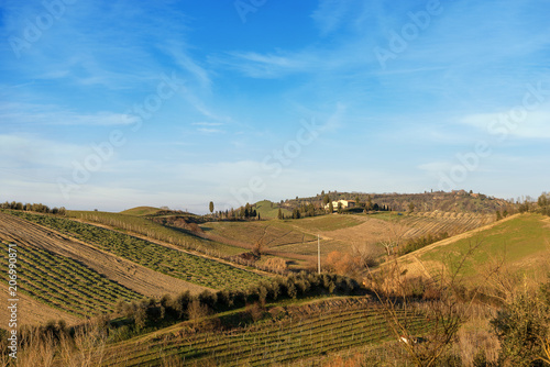 Poster Heuvel Hills in Winter near Monteriggioni Siena Italy