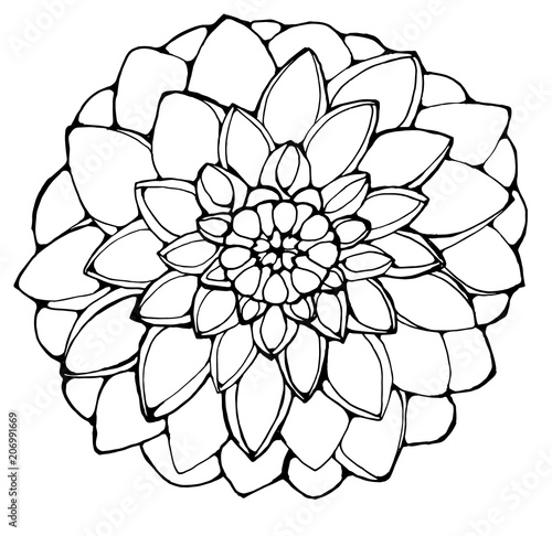 Photographie Black and white picture of a dahlia flower