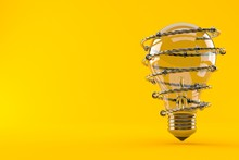 Light Bulb With Barbed Wire