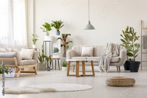 Pouf Next To Rug In Bright Living Room Interior With Plants And