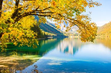 Panel Szklany Optyczne powiększenie Yellow autumn trees on the shore of lake in Austrian Alps