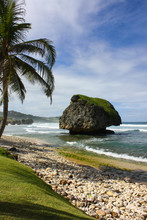 Iconic Caribbean Beach View Fr...