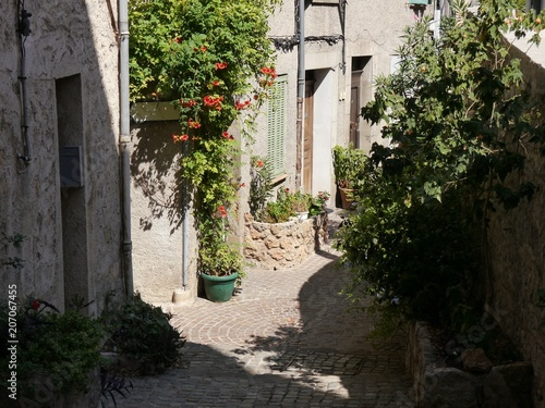 Poster Smal steegje narrow alley in semi-shade, southern France,Pot and tub plants, typical sandstone for houses, coarse cobblestones, pipes for installations on the walls,
