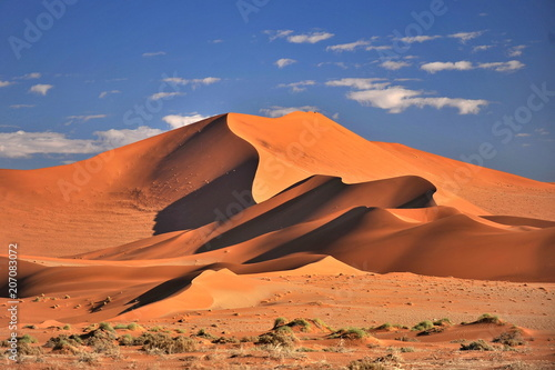 Poster Zandwoestijn Namibia. Red dunes in the Namib Desert