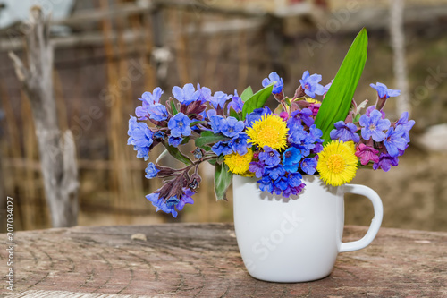 Fototapety, obrazy: Bouquet of primroses blue lungwort in white enameled metal mug on table and vintage background, grunge with place for text, vintage, copy space