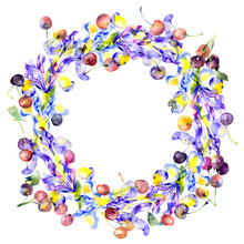 Festive, Fruitful, Vegetable, Berry, Floral Wreath Of Irises And A Red, Ripe Cherry. Watercolor. Illustration
