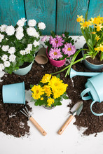 Image Of Soil, Watering Can, F...