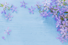 Periwinkle Flowers On A Wooden Background