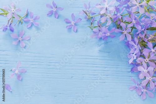 Fotografie, Obraz Periwinkle flowers on a wooden background