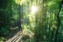 Woman Hiking In Rainforest Of Dorrigo National Park, New South Wales, Australia