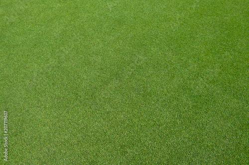 Golf green field - 207119607