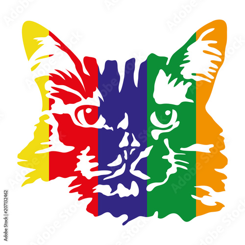 ilustracja-artystyczna-kolorowy-kot-glowa-kota