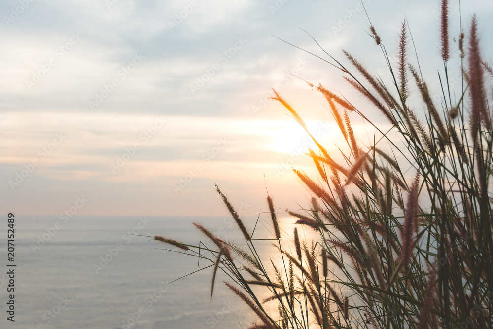 Fototapety, obrazy: Sunset sky over tropical grass and sea in evening.