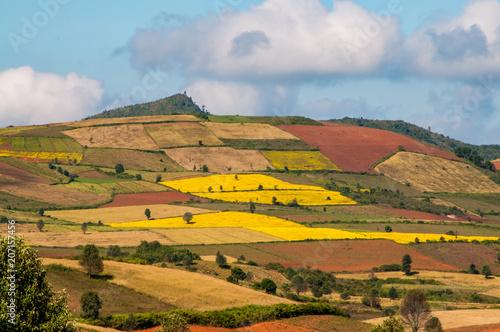 Keuken foto achterwand Rijstvelden Fields in the central highlands of Myanmar