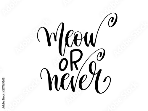 Canvas Print meow or never - hand lettering inscription text about animal