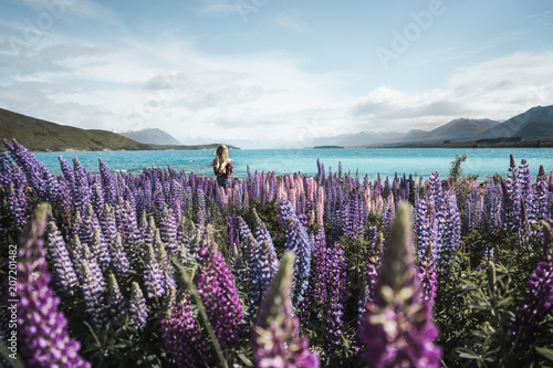 Stickers pour porte Bleu ciel New Zealand - blond girl watching at scenic view of field with purple flowers and blue bay on background