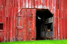 Bright Red Barn With Open Door