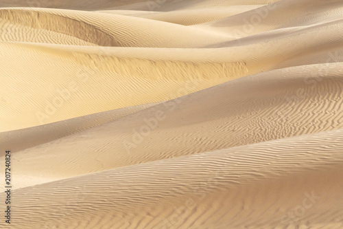 Poster de jardin Desert de sable Beautiful sand dune in Thar desert, Jaisalmer, Rajasthan, India.