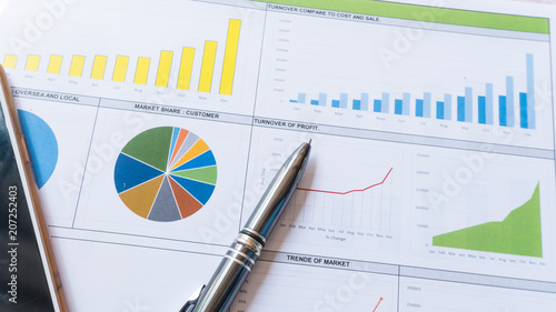 Fotografie, Obraz  business report statement with graph and data analysis