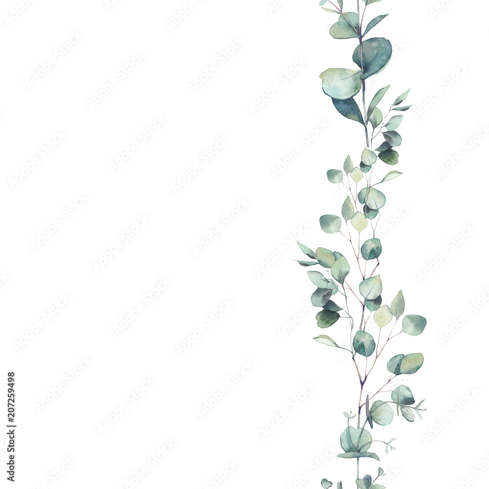 Fototapeta Watercolor eucalyptus branches ornament. Hand painted floral repeating frame isolated on white background.