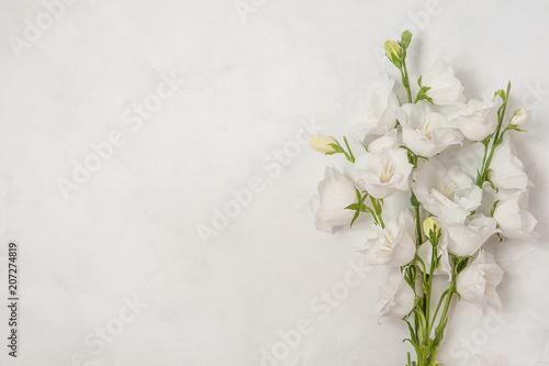 Staande foto Lelietje van dalen Beautiful white flowers campanula on white background