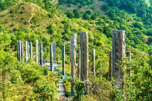 Tuinposter Aziatische Plekken Wisdom Path on Lantau Island in Hong Kong, China