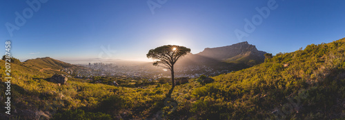 Foto op Aluminium Afrika Panorama of Table Mountain in Cape Town at sunrise
