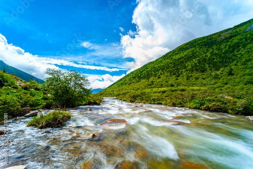 Photo Gorton Creek through lush rainforest in the Columbia River Gorge, Oregon, USA