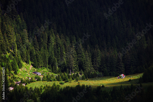 Foto op Canvas Zwart Alpine landscape in the Transylvanian Alps