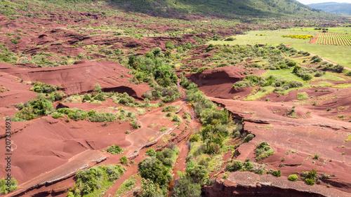 Fotobehang Canyon canyon verdoyant au milieu de plaque rocheuse rouge et sec