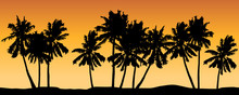 Seamless Vector With Palm Trees And Orange Shaded Background.