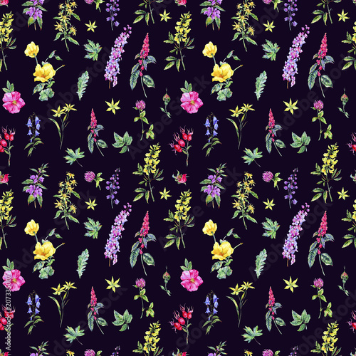 Photo  Watercolor summer medicinal floral seamless pattern, Wildflowers plant