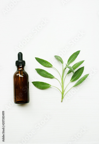 Fototapeta Sage essential oil with sage leaves on white  blackground. obraz na płótnie