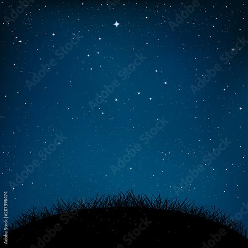 Fototapety, obrazy: night starry sky grass and ground
