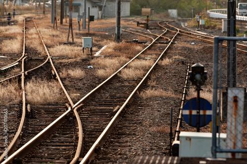 Fotografie, Obraz  夕暮れ時、ローカル鉄道の線路の切替ポイントと信号