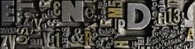 Metal Letterpress Types. A Ba...
