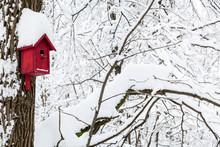 Red Wooden Birdhouse In Winter...