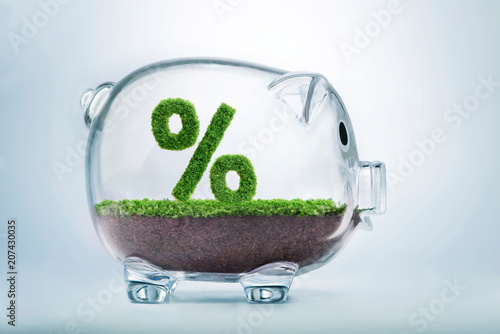 Fototapeta Grass growth savings and investment percentage concept obraz