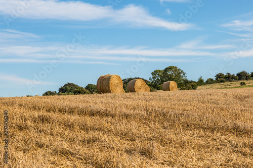 Fotobehang Blauw Hay Bales in a Ploughed Field in Sussex, on a Summer's Evening