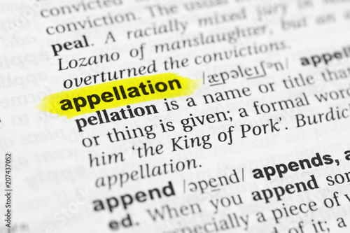 """Fotografía  Highlighted English word """"appellation"""" and its definition in the dictionary"""