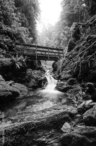 A long exposure monochrome photograph low viewpoint of a footbridge crossing a stream in a gorge in Argyll in Scotland giving a sense of calm movement and milky waters. - 207437690