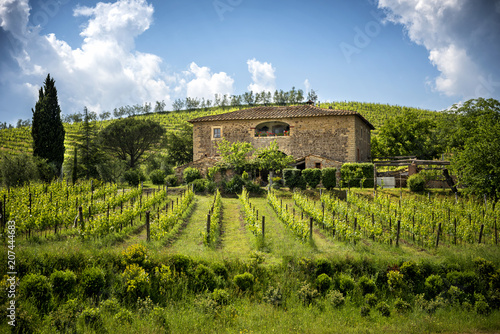 Chianti vineyards in Tuscany, Italy. Fotobehang