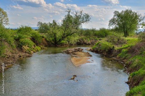Foto op Plexiglas Rivier Beautiful spring landscape. A sunny day by the river.