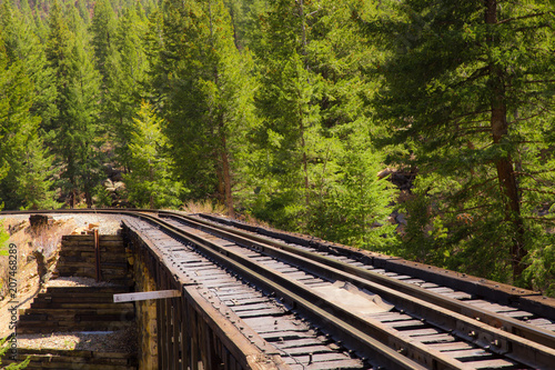 Fotografía Railroad tracks through mountain countryside and pine tree with vintage retro effect