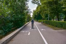 Bike Path In City Park