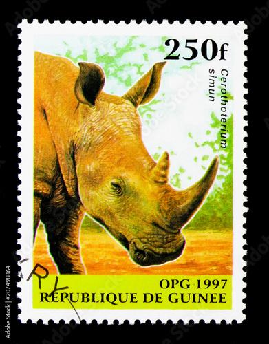Poster  White Rhinoceros (Cerotherium simum), Native Animals serie, circa 1997