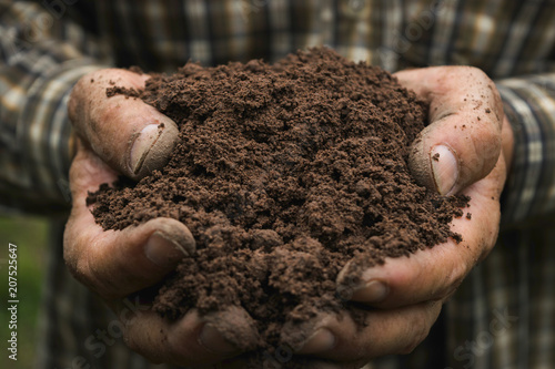 closeup hand of person holding abundance soil for agriculture or planting peach Canvas