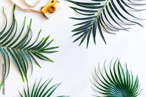 ea76066d Traveler accessories. Tropical palm leaf branches on white background with  copy space for text. Travel vacation concept. Summer background. Flat lay,  top .