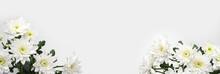 Blumen Hintergrund (Chrysanthe...